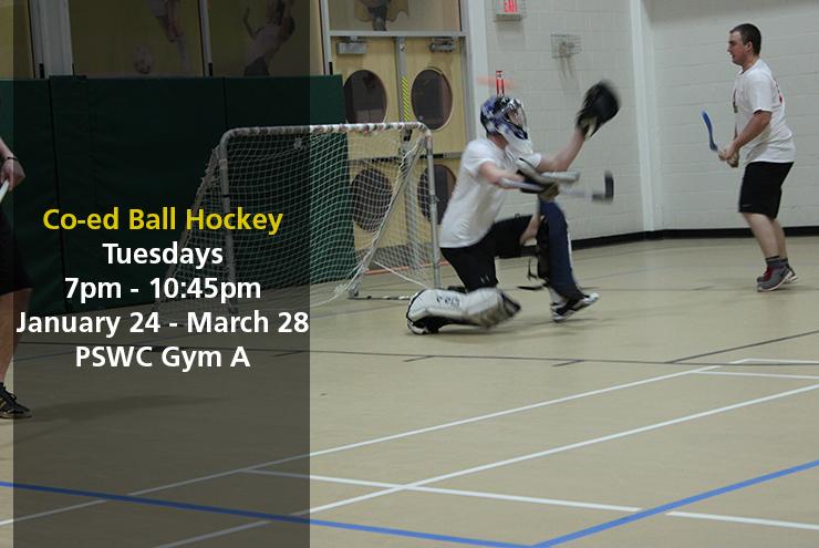 ball_hockey_photo
