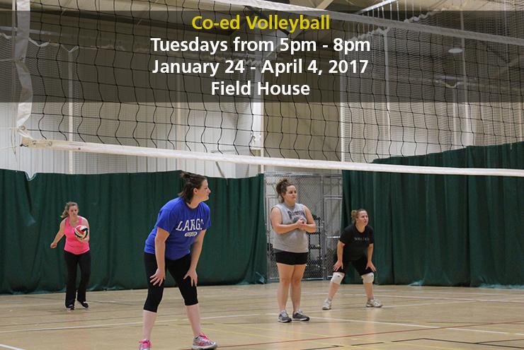 volleyball_photo